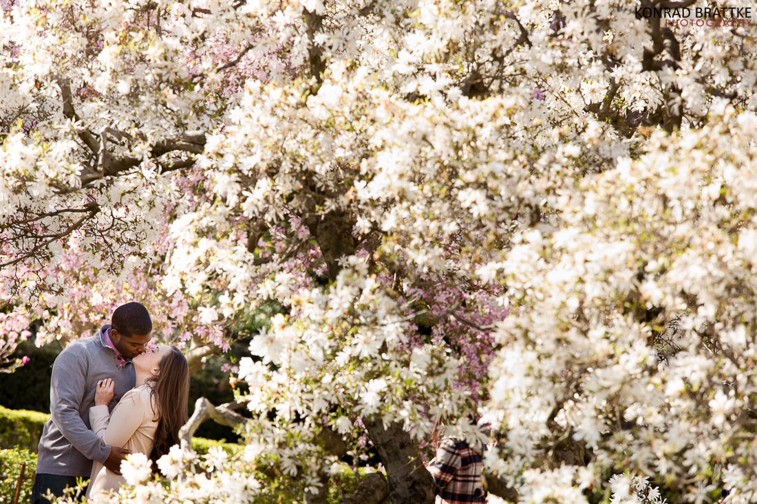 brooklyn_botanic_garden_photoshoot__0001