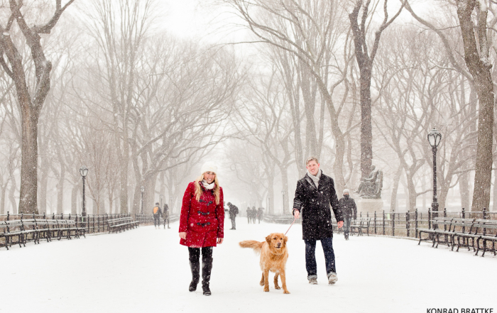 central-park-winter-wonderland-engagement_0007