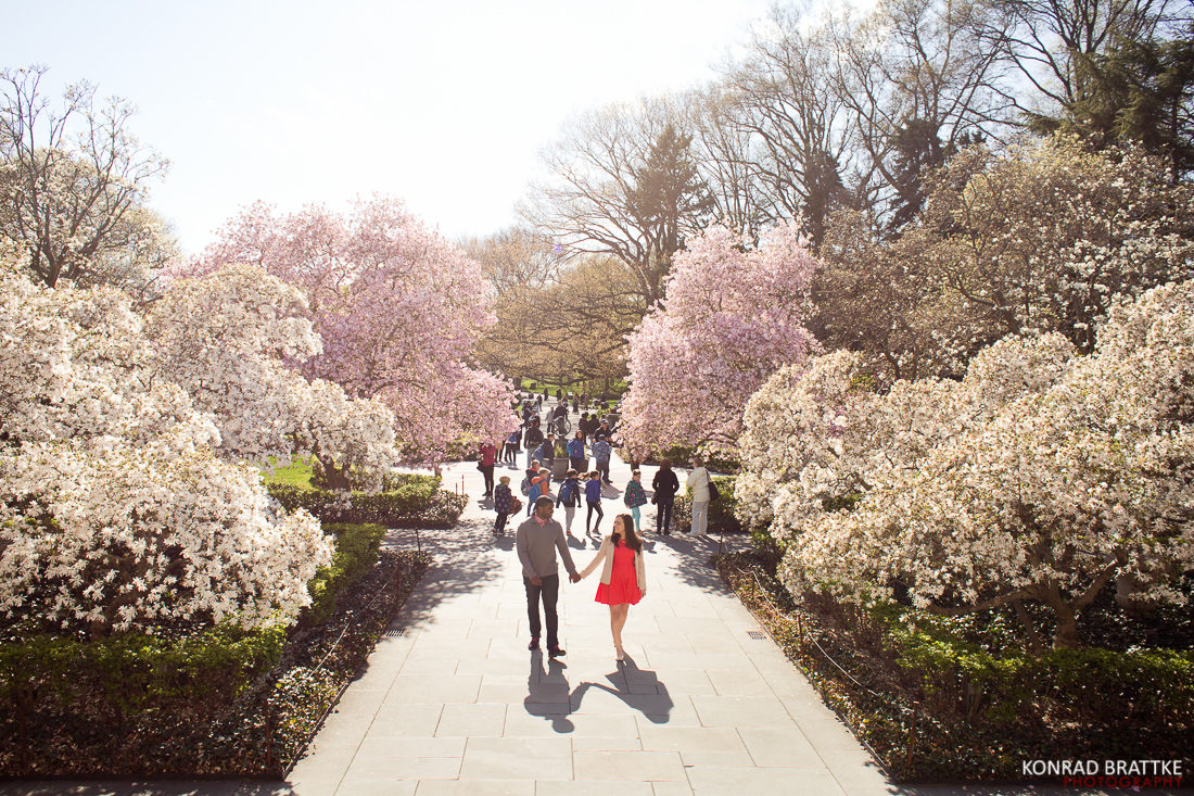 brooklyn_botanic_garden_photoshoot__0016